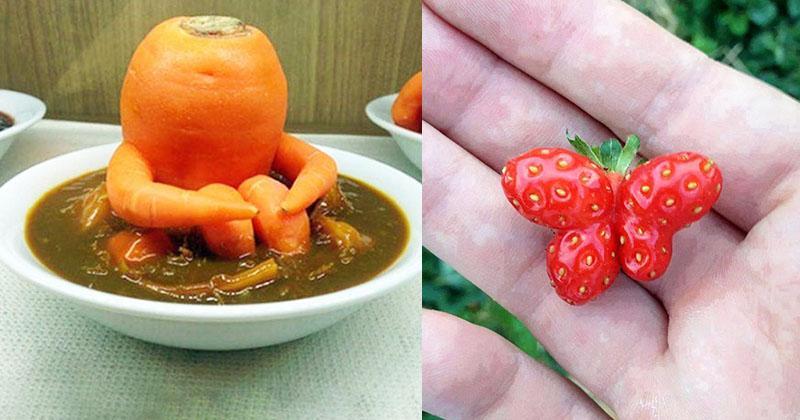 20個「讓你捨不得吃的蔬果精靈」 紅蘿蔔坐在咖哩飯上沉思:為什麼是我...