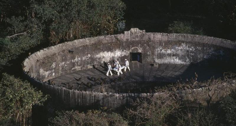 古老火祆教「寂靜之塔」上有超多鳥在吃飯 近看「全都是人體」印證人生真諦