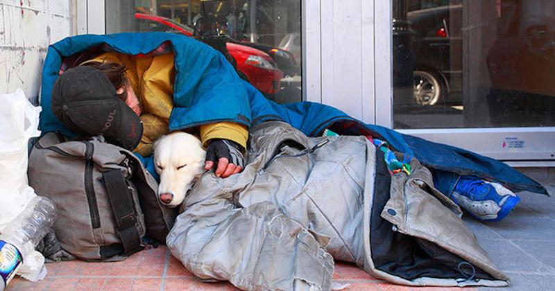 20張照片證明「人類沒有狗狗陪伴靈魂就只剩一半」的超感人照片
