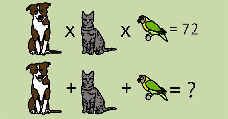 連數學滿分的工程師都會答錯的「4題數學測驗」 你有辦法全對嗎?