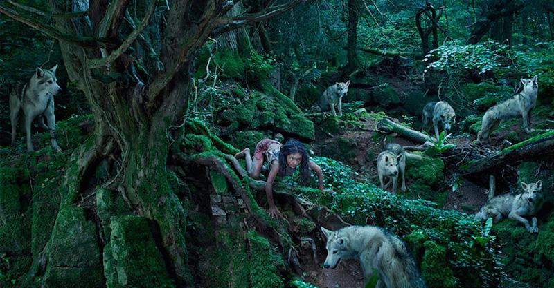 14個「從小被動物撫養長大」悲慘人類 狼少女和狼群一起生吞羊