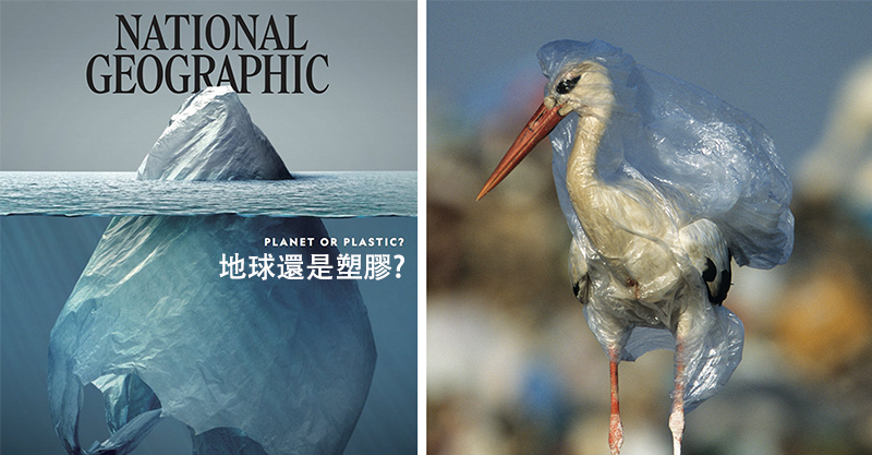 最新《國家地理雜誌》封面被網大讚 但一打開...裡面的畫面才是真正的殘酷