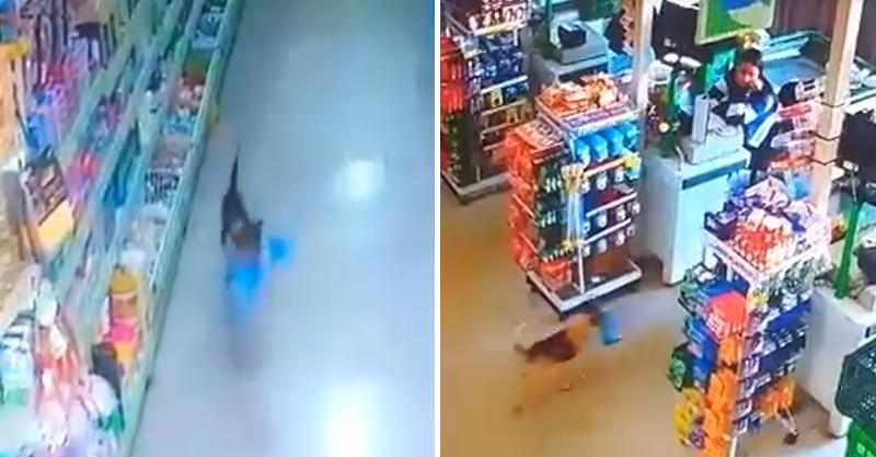 「嘿~你抓不到我!」大膽小偷超市咬麵包狂奔 犯罪身影太萌...店員直接放行
