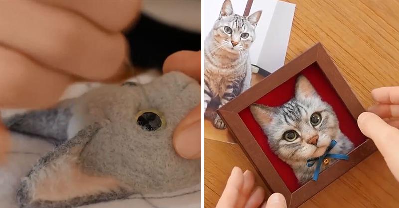 原以為只是一般羊毛氈 成品完成後驚呆:不說我以為是真貓!