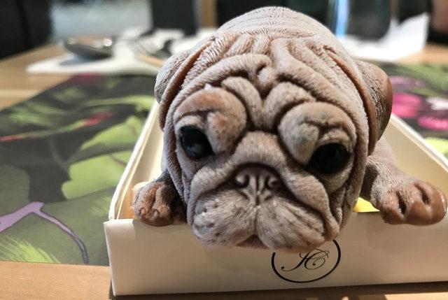 主人切超逼真狗蛋糕 汪以為目睹現場「嘴巴嚇到開開」:安娘喂~該不會下個是我
