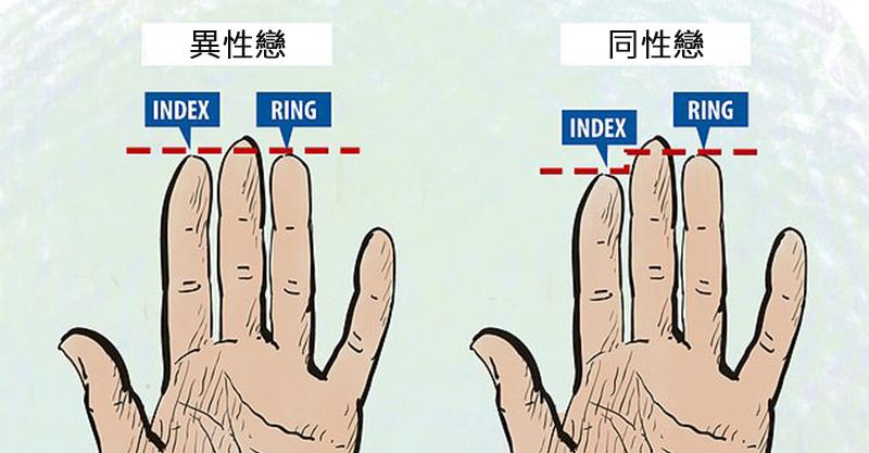 你是同性戀嗎?科學家證「手指長度」看穿性向 女生差異更明顯!