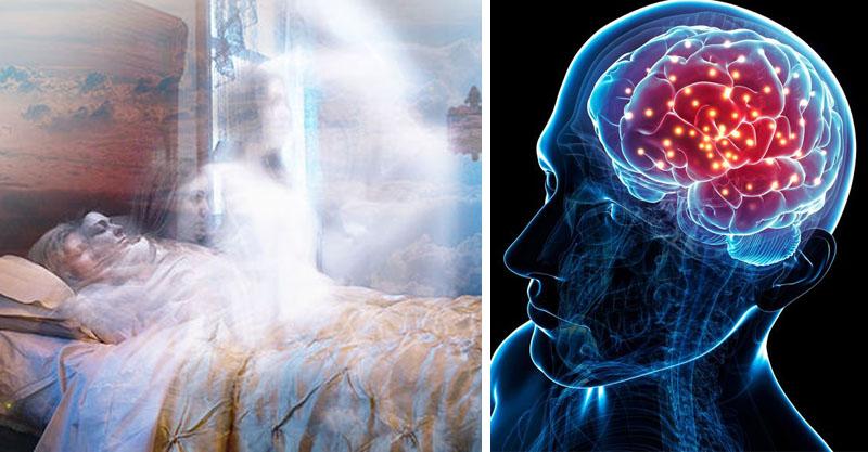 驚人研究發現:當你離.世時,你會知道自己已經去.世了!博士直言:人類只是被「困在」軀殼裡