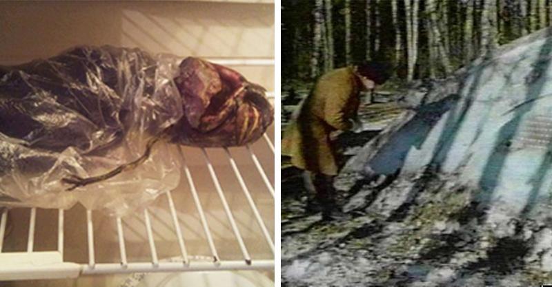 俄羅斯老婦把外星人「保存在冰箱2年」 科學家:那是他們最活躍的地區!