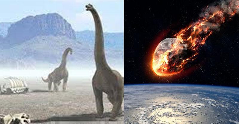 5大「地球生物滅.絕」時間軸計算 專家提慎重通知:第6次就快要來了!