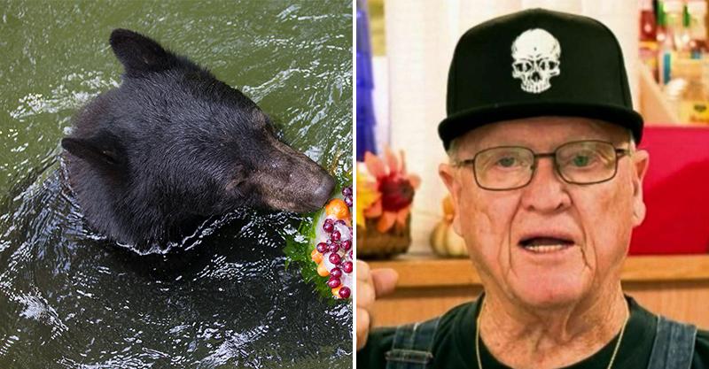 78歲爺半路遇到森77熊媽!都逃不了只好「賞牠幾顆拳頭」 結果被當娃娃狂甩