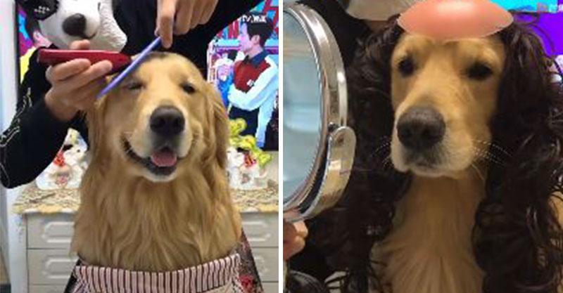 阿金瞇眼接受「月月造型師」嚕頭  剪完照鏡子笑容逐漸母湯:這長髮河童是誰T T