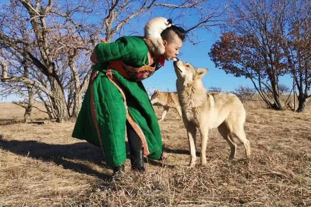內蒙少女的寵物直接嚇走3任男友 嘴巴叼生肉親密餵食8匹狼:牠們是我的伴侶