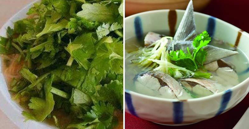 專家發現「再討厭都得吃香菜」的超強理由 如果你有「金魚腦」每天最好來一把!