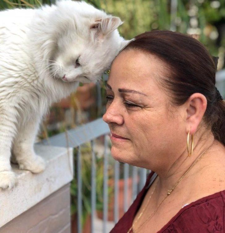 20隻應該要頒「最能療癒人心獎」給牠們的超可愛動物
