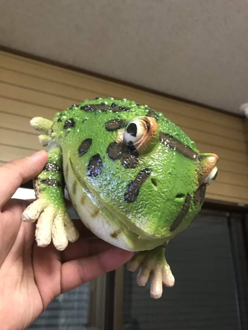神人做出「超擬真青蛙」杯套 完美複製「皮膚觸感」網友驚嘆:喝飲料畫面超衝擊!