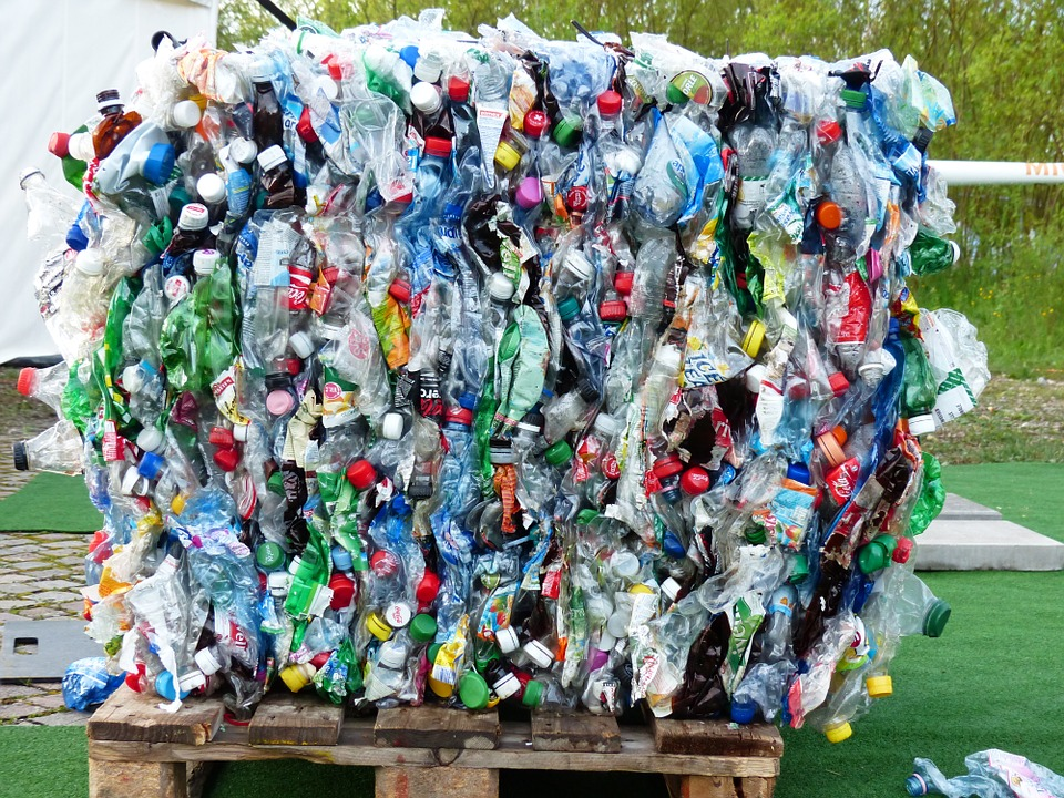 研究曝光「亂丟垃圾」人類才是最大受害者 每年吃下「5萬個塑料微粒」專家:還不止這樣