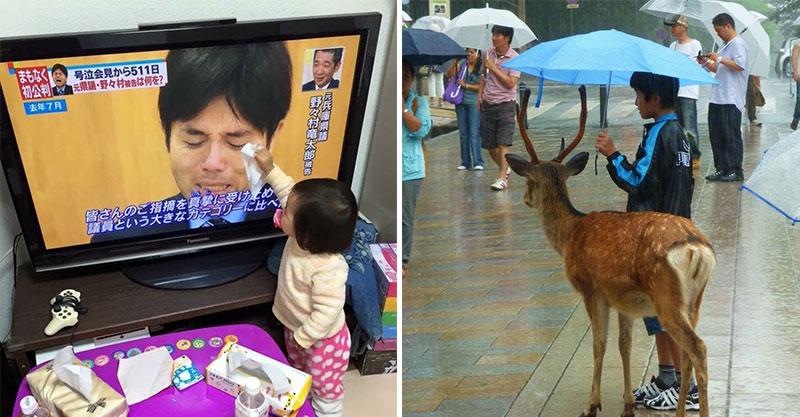 17張捕捉孩子「化身天使瞬間」的超暖心畫面 小朋友「初次看到寶寶」表情太感人!
