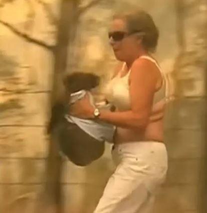 影/無尾熊寶寶「從森林大火逃出」哭著呼救 她下秒「脫衣抱起」畫面超心碎