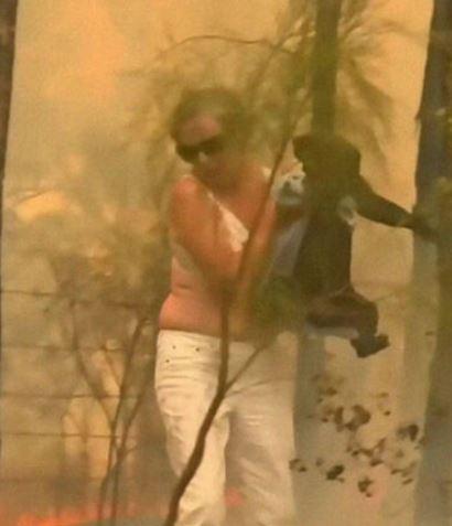 無尾熊「從澳洲野火被救出」撐不住 最後在眾人祈禱下「化身天使」網爆淚