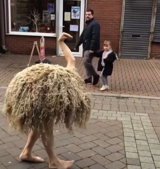 街頭驚見一隻「好像有點怪怪」的鴕鳥 仔細一看網全笑瘋:旁邊小孩嚇到石化!