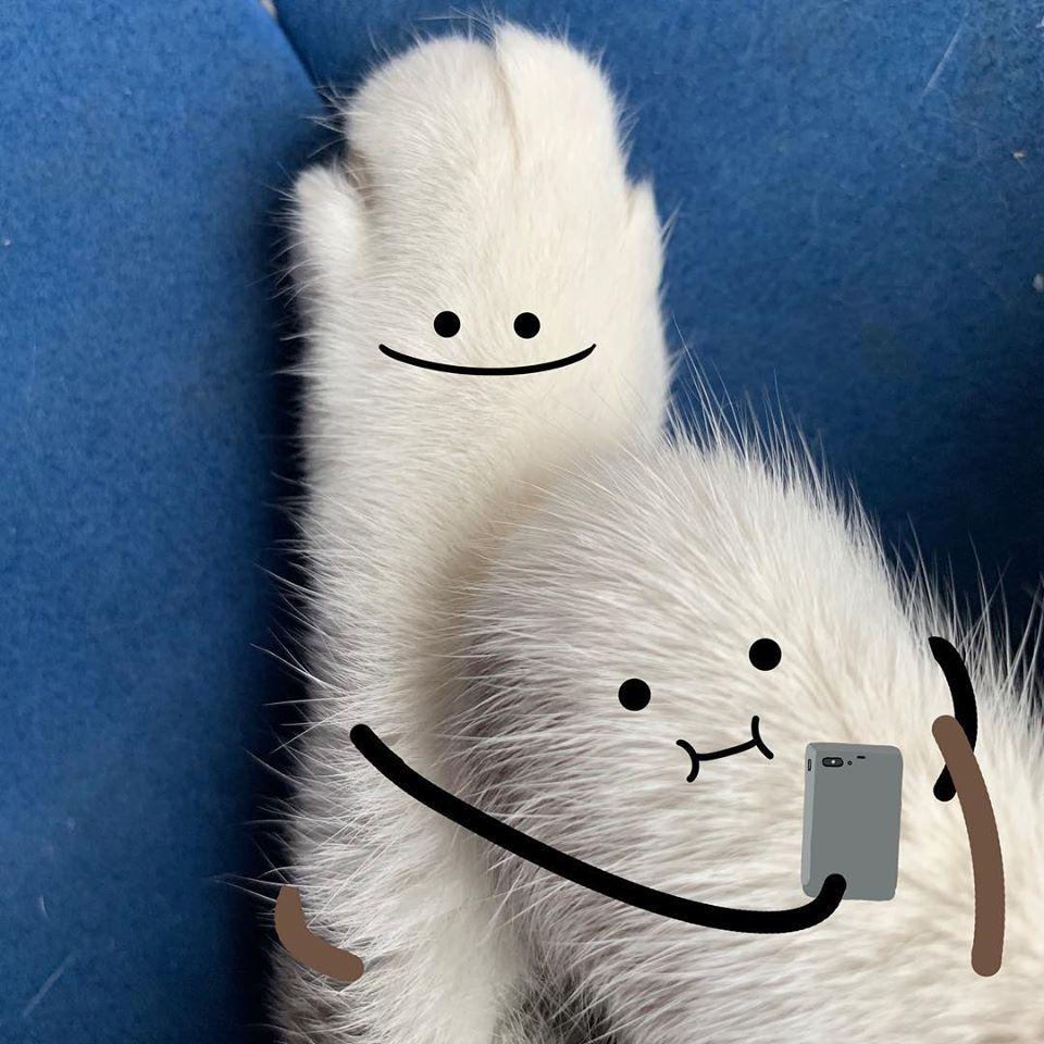 藝術家「用線條」幫日常物品「賦予靈魂」 貓肉掌變得更療癒❤