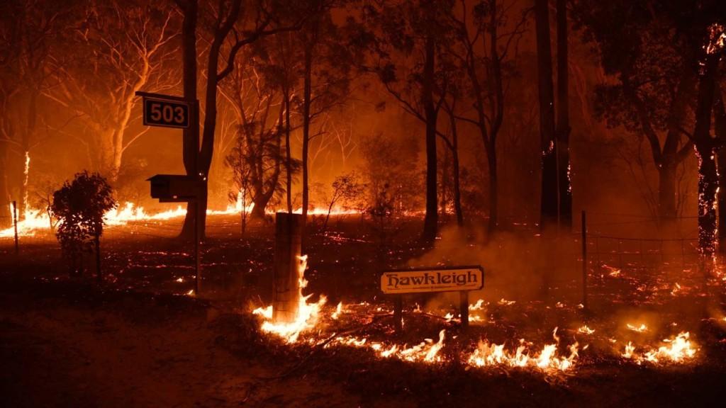 澳洲野火持續燃燒!專家心碎曝「5億隻動物」消失在火海:絕大多數已滅絕