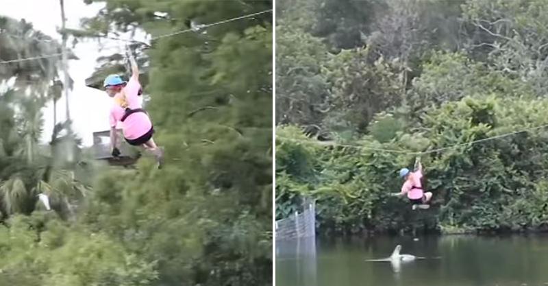 影/她挑戰「溜索渡河」勇氣過人 下秒「兇猛鱷魚」躍上水面畫面超驚險!